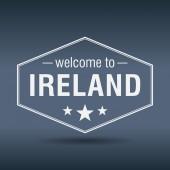 欢迎来到爱尔兰六角形的白色复古标签 — 图库矢量图片