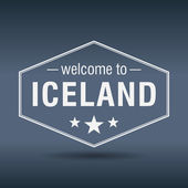 Welcome to Iceland hexagonal white vintage label — Stock Vector