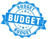 Budget blue vintage isolated seal — Photo