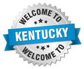 Kentucky 3d silver badge with blue ribbon — Stock Vector