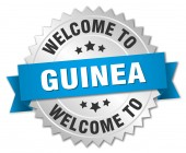 Guinea 3d silver badge with blue ribbon — Stock Vector