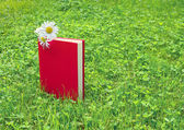 Closed book and chamomile on grass — Stock Photo