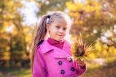 Sonbahar parkta güzel bir kız — Stok fotoğraf