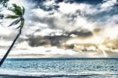 Rainbow in Polynesia — Stock Photo
