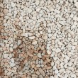 Dry and wet pebbles — Stock Photo #53846361