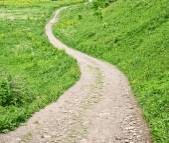 Outdoor winding path — Stock Photo