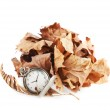 Opened pocket watch and dried leaves — Stock Photo #55630751