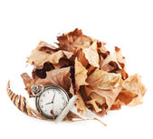 Opened pocket watch and dried leaves — Stock Photo