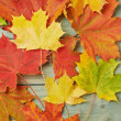 Maple leaves over the wooden boards — Stock Photo #59312139
