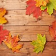 Maple leaves over the wooden boards — Stock Photo #59312169