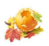 Halloween pumpkin head — Stock Photo