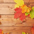 Maple leaves over the wooden boards — Stock Photo #61681421