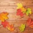 Maple leaves over the wooden boards — Stock Photo #61681423