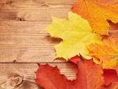 Las hojas de arce sobre los tableros de madera — Foto de Stock