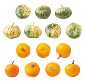 Orange and green pumpkins isolated — Stock Photo