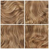 Set of four hair backgrounds — Zdjęcie stockowe