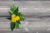 Yellow dandelions on planks — Stock Photo