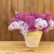 Ceramic pot with lilac flowers — Stock Photo #74482575