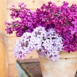 Ceramic pot with lilac flowers — Stock Photo #74483199