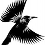 Black and white hummingbird — Stock Vector #61192655