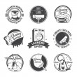 Set of vintage logos, labels and badges cleaning services — Stock Vector #69108087
