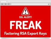 FREAK - Factoring RSA Export Keys Security - Warning in simple o — Stock Vector