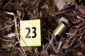 Cartucho de la pistola en la hierba — Foto de Stock