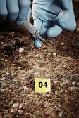 Lifting evidences on crime place — Stock Photo