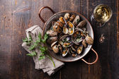 Shells vongole venus clams with parsley — Stockfoto