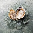 Heart shape Oyster  with ice — Stock Photo #78386356
