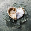 Heart shape Oyster with ice — Stock Photo #79895150