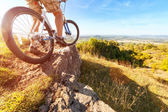 Mountain biker looking at downhill dirt track — Foto Stock