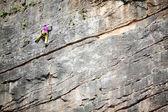 Vertical rock climbing — Stock Photo