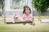 Asian baby  baby on swing with puppy — Stock Photo