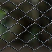 Old chain link fence — Stock Photo
