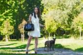 公園に 2 つのグレイハウンドの少女 — ストック写真