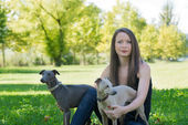 Girl  with two greyhounds in the park — Stock Photo