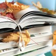 Books and leaves — Stock Photo #54926599