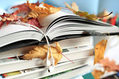 Books and leaves — Stock Photo