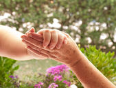 Holding hands with Senior Adult — Stock Photo