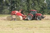 Hay harvest in green field — Stock Photo