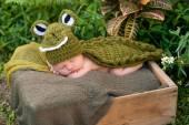 Newborn Baby Wearing an Alligator Costume — Stock Photo
