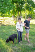 Dog plays with the owners on the park. — Stock Photo