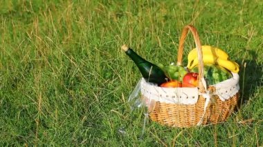 Picnic Basket on green grass on a sunny day. (NTSC) — Stockvideo