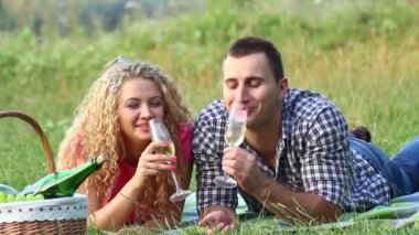 Couple at a picnic on a summer day (PAL) — Stockvideo