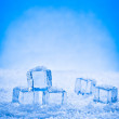 Wet ice cubes and snow — Stock Photo #70602535