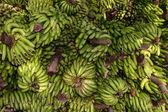 绿色香蕉 — 图库照片