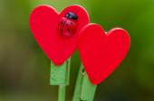 Red Heart shape wood stick — Zdjęcie stockowe