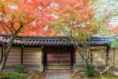 Japanese style garden in autumn (Koyo) — Stock Photo