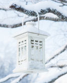 White snowy lantern on tree — Stock Photo